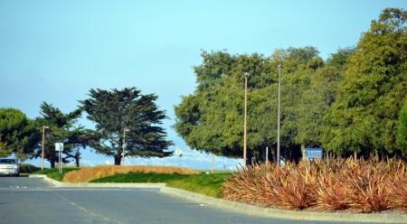 Harbor Bay Median